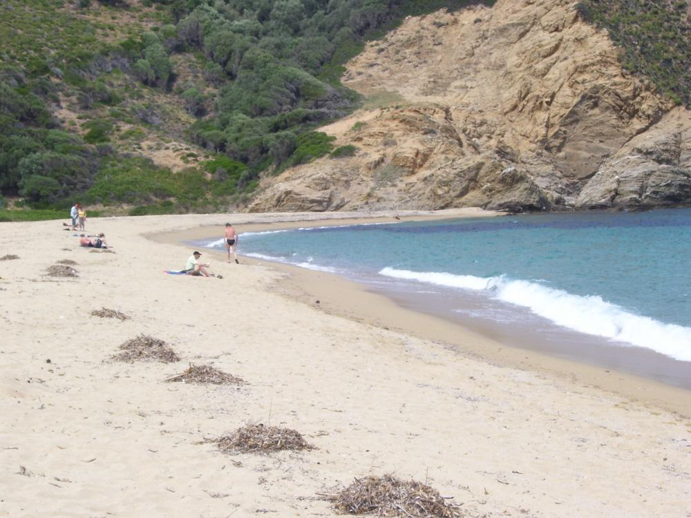 The beach in a land for villa development in Skiathos island