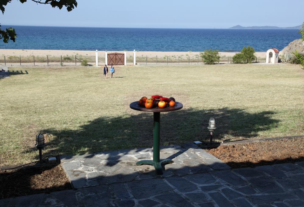 Stand alone beachfront villa